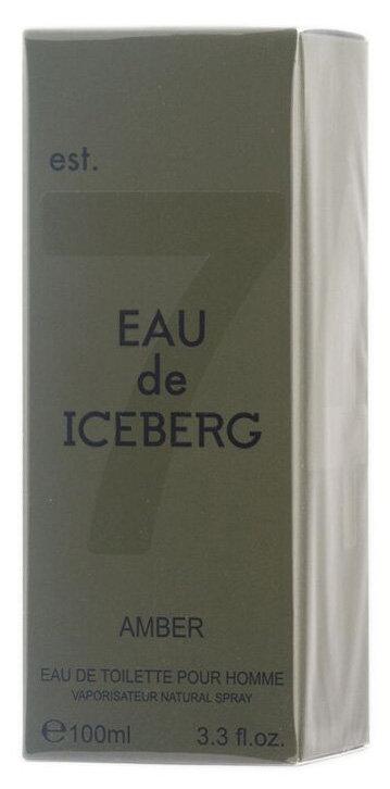 Iceberg Eau de Iceberg Amber Eau de Toilette